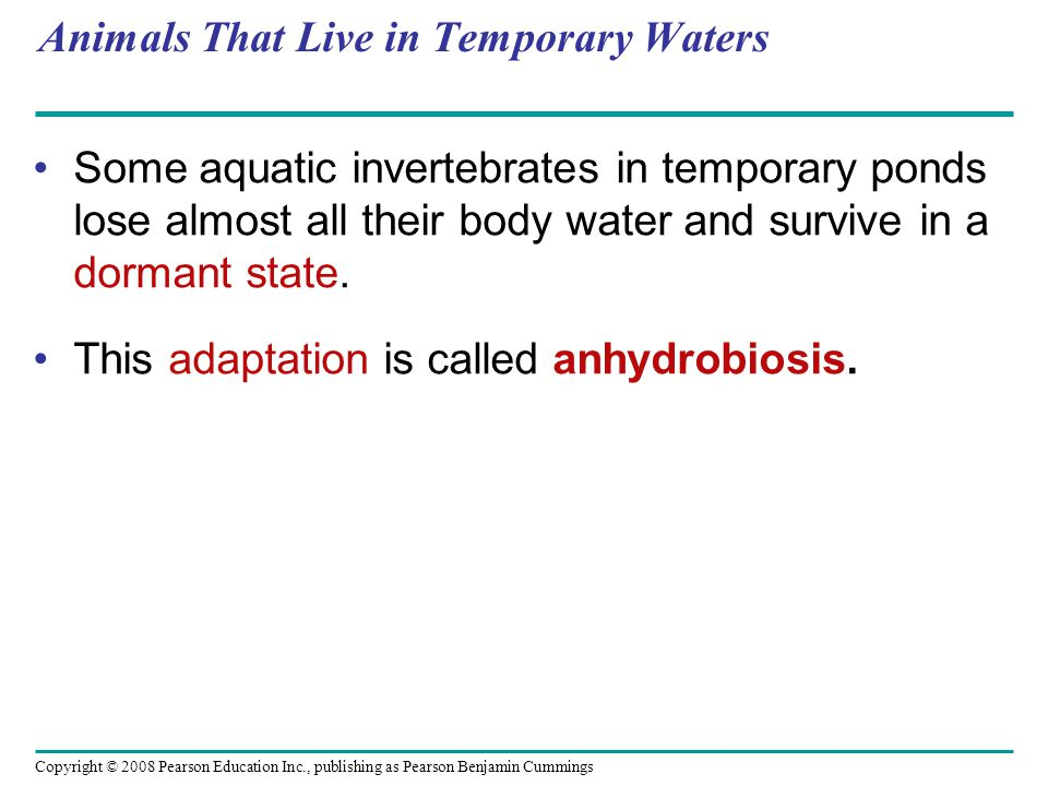 Anhydrobiosis - adaptation… Hydrated = active state dehydrated = dormant state.