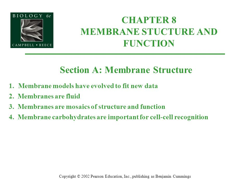 CHAPTER 8 MEMBRANE STUCTURE AND FUNCTION Copyright © 2002 Pearson Education, Inc., publishing as Benjamin Cummings Section A: Membrane Structure 1.Mem
