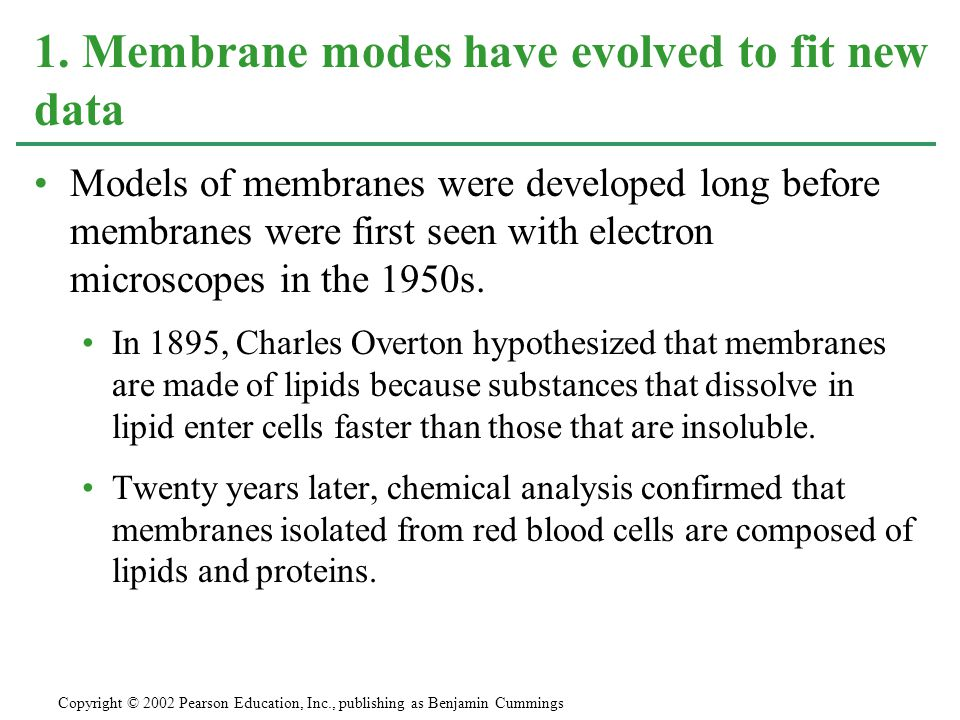 Models of membranes were developed long before membranes were first seen with electron microscopes in the 1950s. In 1895, Charles Overton hypothesized