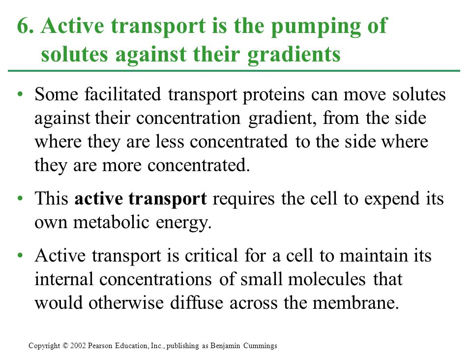 Some facilitated transport proteins can move solutes against their concentration gradient, from the side where they are less concentrated to the side