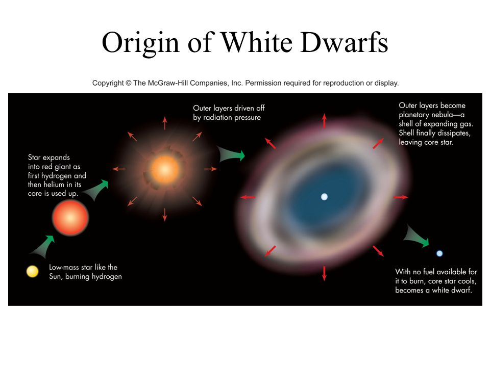 Origin of White Dwarfs