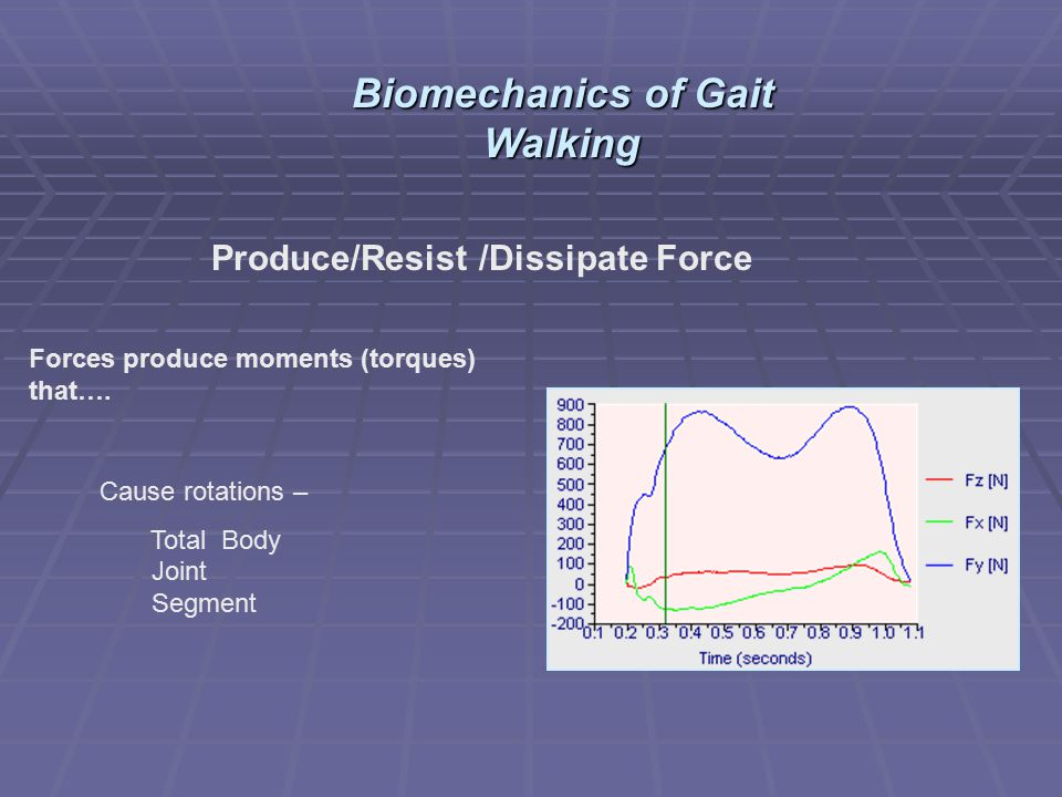 Produce/Resist /Dissipate Force Forces produce moments (torques) that…. Cause rotations – Total Body Joint Segment Biomechanics of Gait Walking