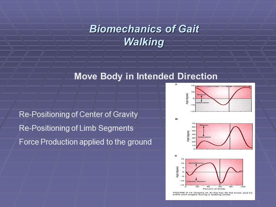 Move Body in Intended Direction Re-Positioning of Center of Gravity Re-Positioning of Limb Segments Force Production applied to the ground Biomechanic