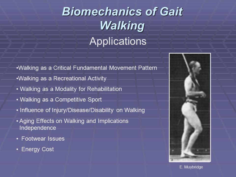 Applications Walking as a Critical Fundamental Movement Pattern Walking as a Recreational Activity Walking as a Modality for Rehabilitation Walking as