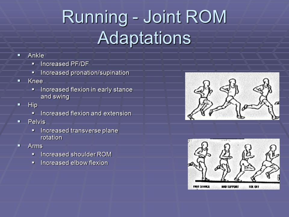 Running - Joint ROM Adaptations  Ankle  Increased PF/DF  Increased pronation/supination  Knee  Increased flexion in early stance and swing  Hip