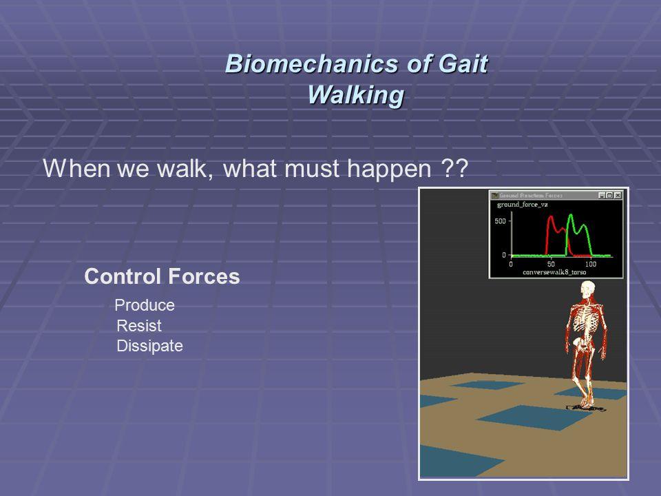 When we walk, what must happen ?? Control Forces Produce Resist Dissipate Biomechanics of Gait Walking