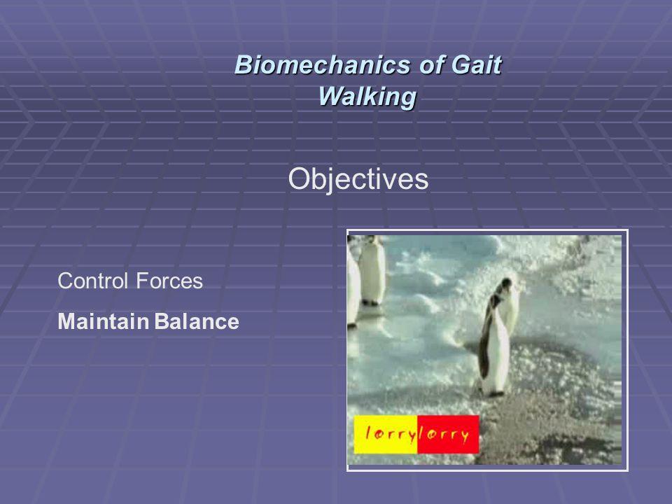 Objectives Control Forces Maintain Balance Biomechanics of Gait Walking