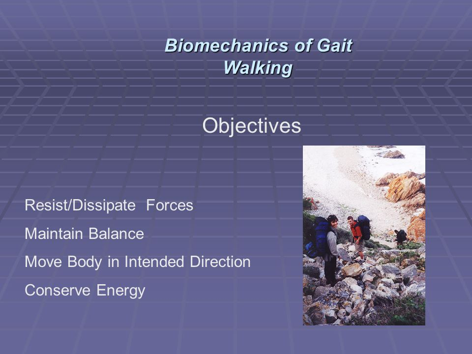 Objectives Resist/Dissipate Forces Maintain Balance Move Body in Intended Direction Conserve Energy Biomechanics of Gait Walking