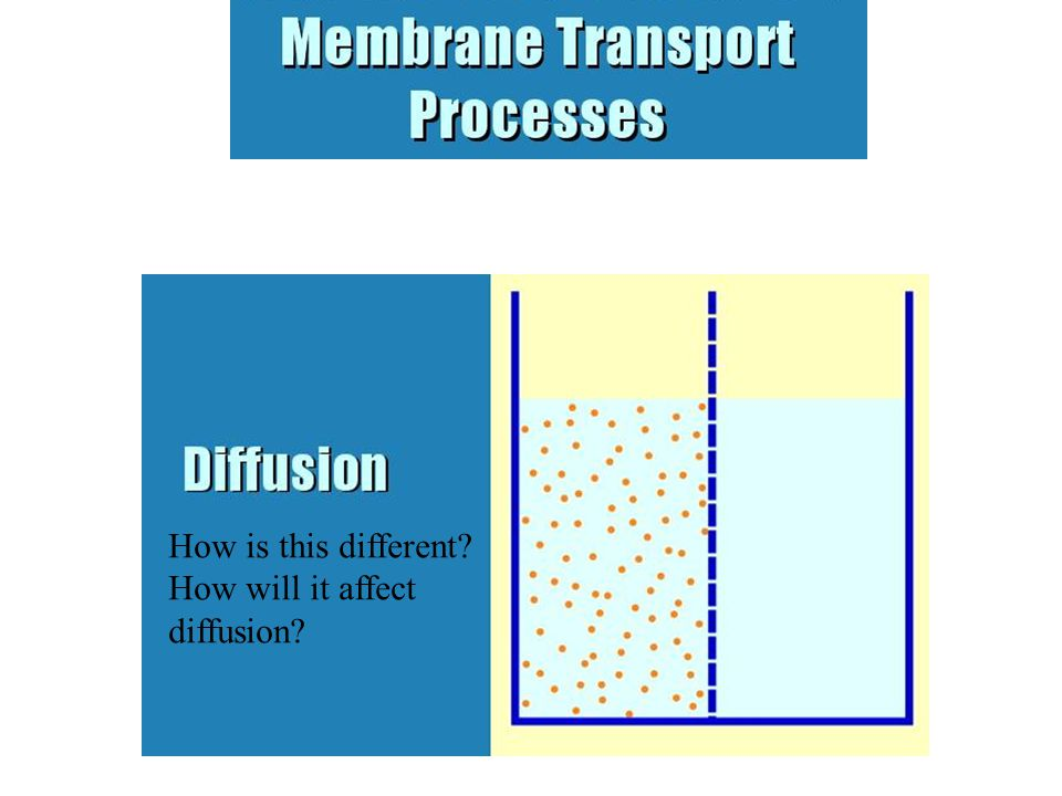 How is this different? How will it affect diffusion?