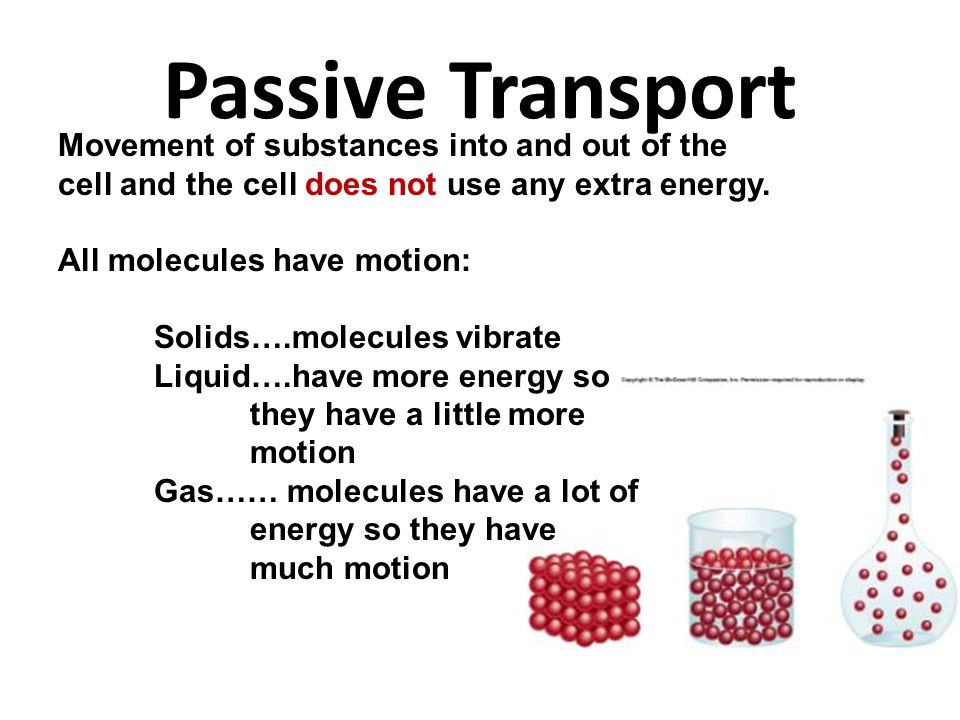 Passive Transport Movement of substances into and out of the cell and the cell does not use any extra energy.