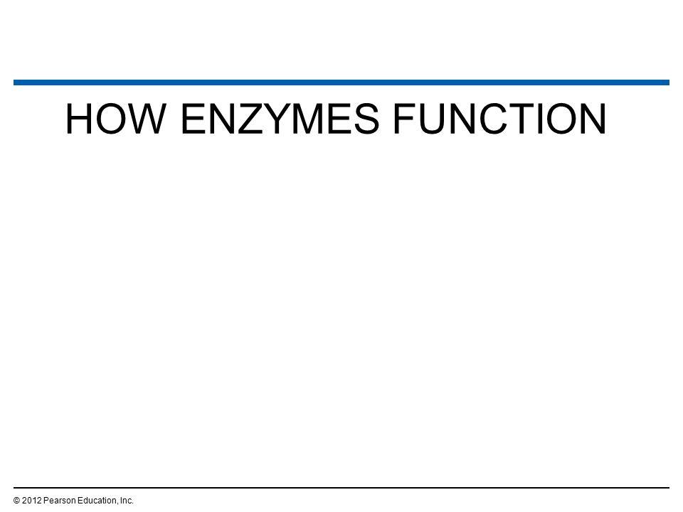 HOW ENZYMES FUNCTION © 2012 Pearson Education, Inc.