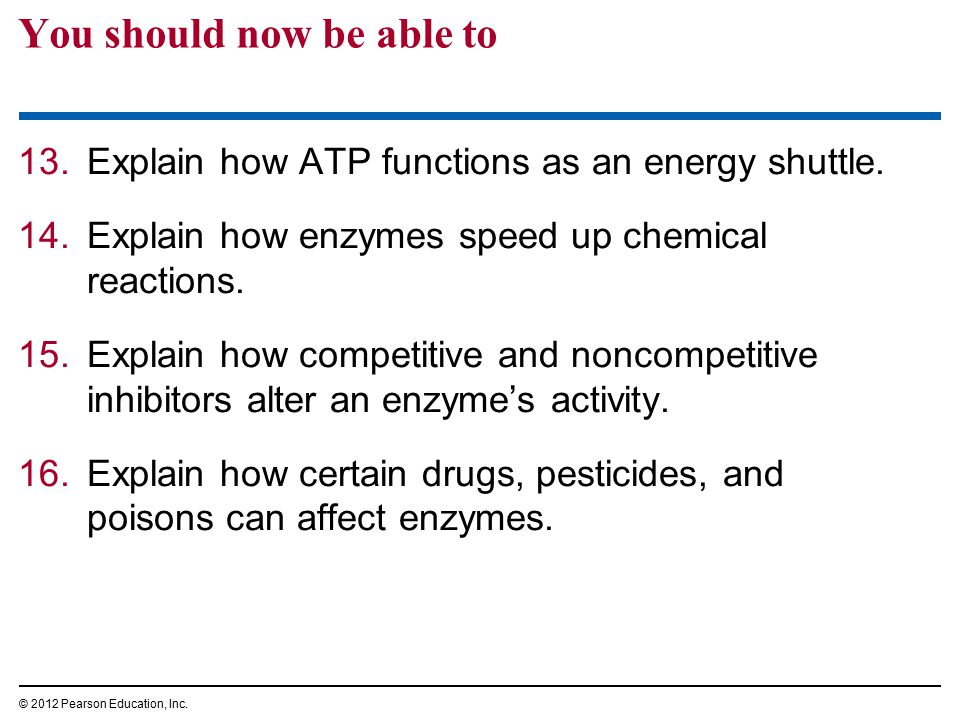 You should now be able to 13.Explain how ATP functions as an energy shuttle. 14.Explain how enzymes speed up chemical reactions. 15.Explain how compet