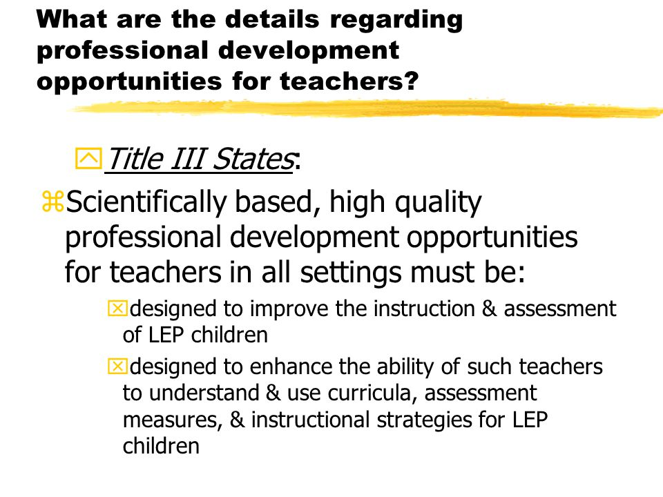 What are the details regarding professional development opportunities for teachers.