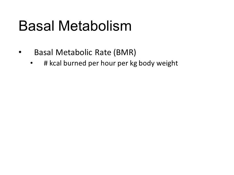 Basal Metabolism Basal Metabolic Rate (BMR) # kcal burned per hour per kg body weight