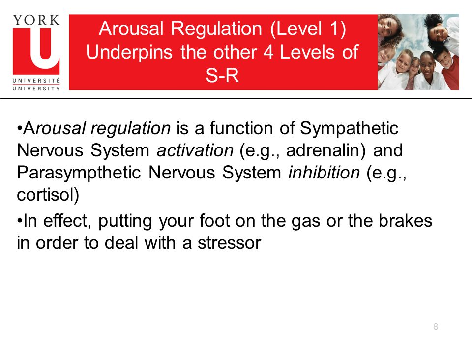 Continuum of Arousal Regulation There is a continuum of arousal, ranging from sleep to being flooded how much recovery is necessary or how much activation is needed for any particular task is going to vary from child to child and situation to situation 9