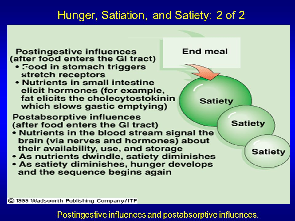 Hunger, Satiation, and Satiety: 2 of 2 Postingestive influences and postabsorptive influences.