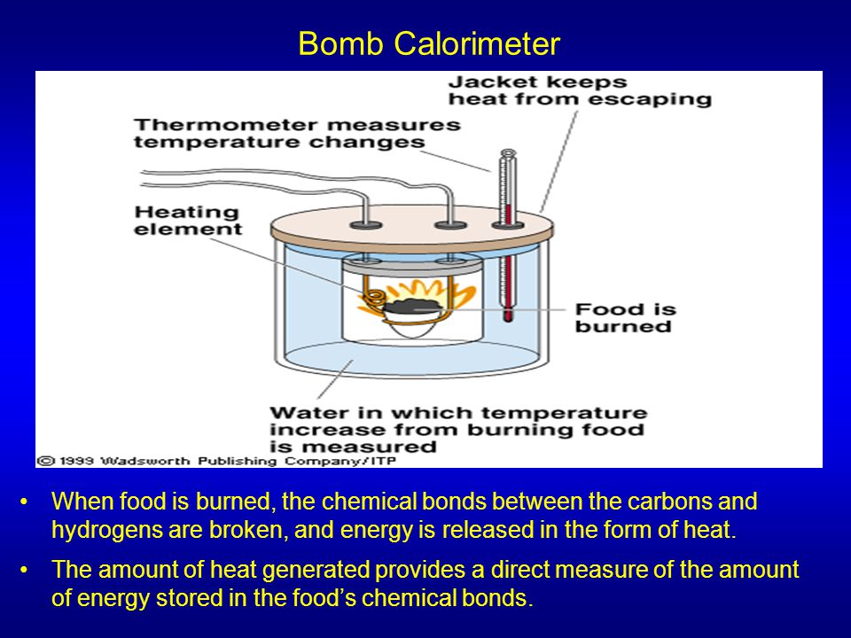 Bomb Calorimeter When food is burned, the chemical bonds between the carbons and hydrogens are broken, and energy is released in the form of heat. The