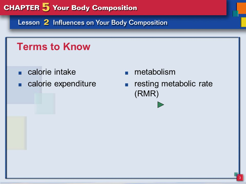 3 Terms to Know calorie intake calorie expenditure metabolism resting metabolic rate (RMR)