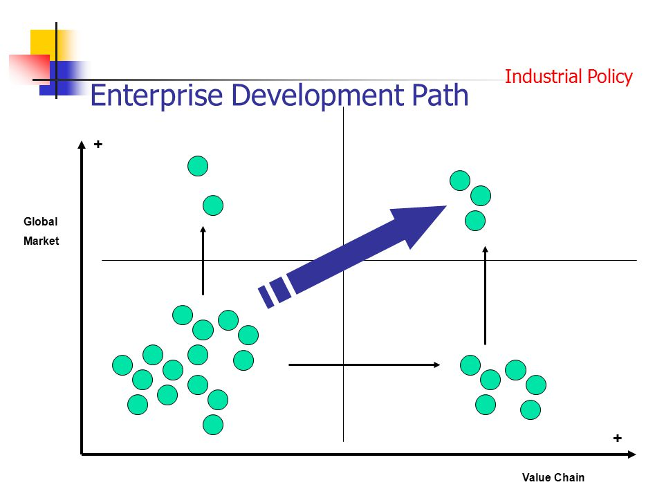 Enterprise Development Path + Global Market + Value Chain Industrial Policy