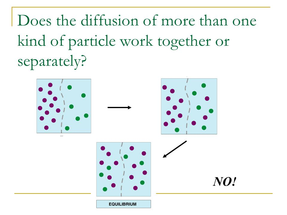 Does the diffusion of more than one kind of particle work together or separately NO!