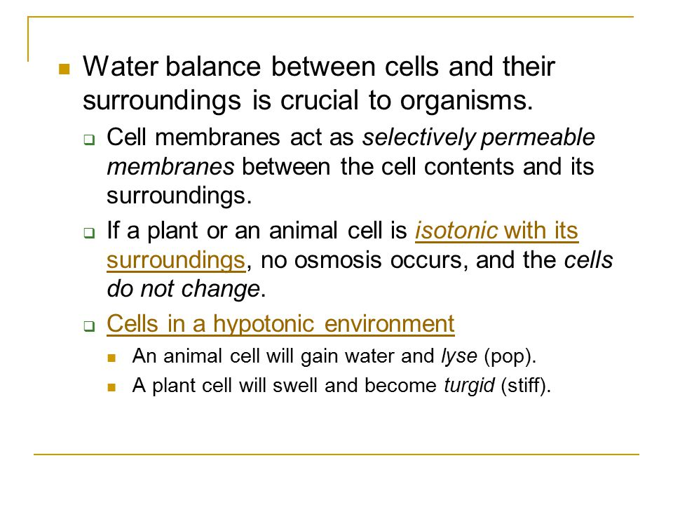 Water balance between cells and their surroundings is crucial to organisms.  Cell membranes act as selectively permeable membranes between the cell c