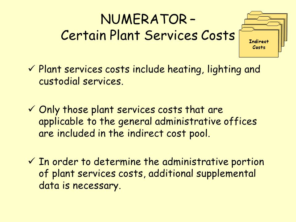 NUMERATOR – Certain Plant Services Costs Plant services costs include heating, lighting and custodial services. Only those plant services costs that a