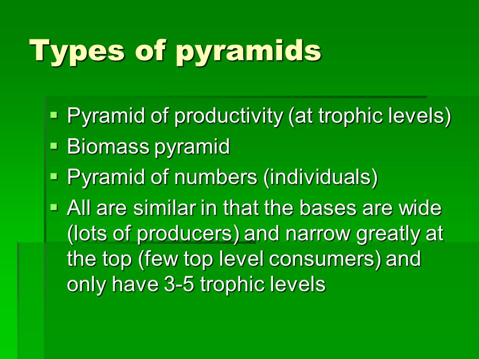 Types of pyramids  Pyramid of productivity (at trophic levels)  Biomass pyramid  Pyramid of numbers (individuals)  All are similar in that the bases are wide (lots of producers) and narrow greatly at the top (few top level consumers) and only have 3-5 trophic levels