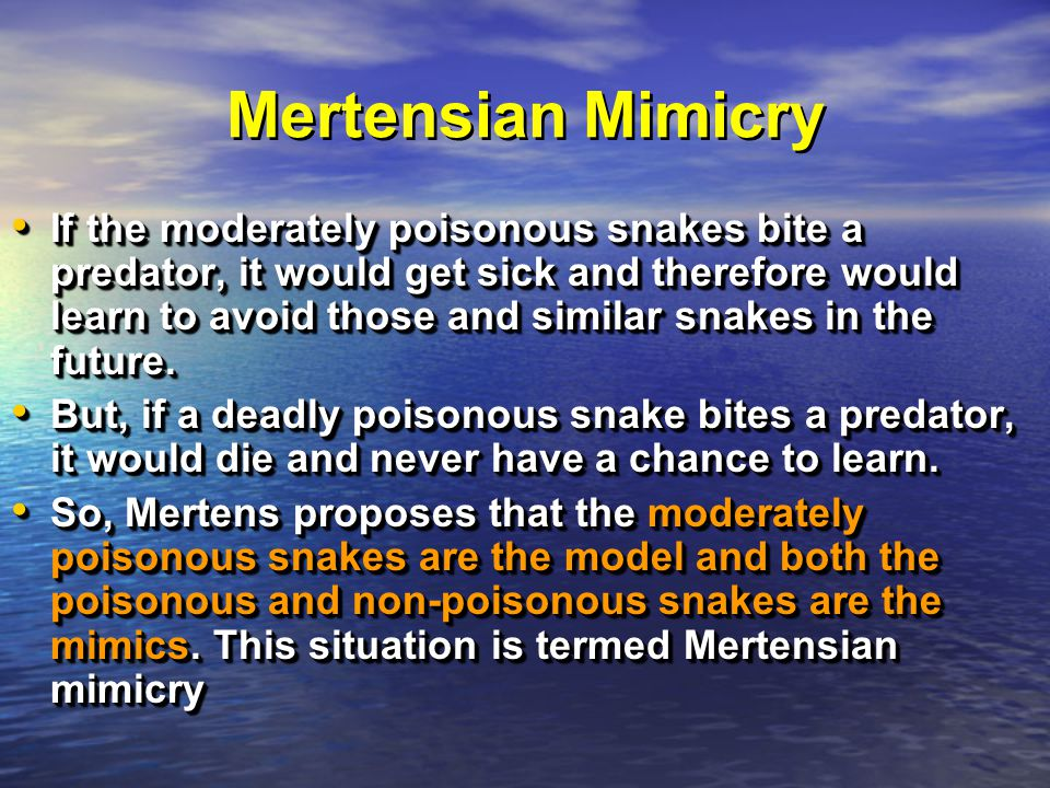 Mertensian Mimicry If the moderately poisonous snakes bite a predator, it would get sick and therefore would learn to avoid those and similar snakes in the future.