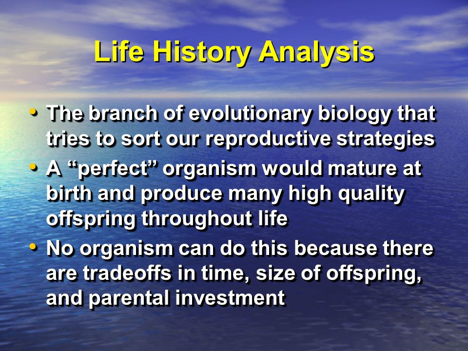 Life History Analysis The branch of evolutionary biology that tries to sort our reproductive strategies The branch of evolutionary biology that tries to sort our reproductive strategies A perfect organism would mature at birth and produce many high quality offspring throughout life A perfect organism would mature at birth and produce many high quality offspring throughout life No organism can do this because there are tradeoffs in time, size of offspring, and parental investment No organism can do this because there are tradeoffs in time, size of offspring, and parental investment The branch of evolutionary biology that tries to sort our reproductive strategies The branch of evolutionary biology that tries to sort our reproductive strategies A perfect organism would mature at birth and produce many high quality offspring throughout life A perfect organism would mature at birth and produce many high quality offspring throughout life No organism can do this because there are tradeoffs in time, size of offspring, and parental investment No organism can do this because there are tradeoffs in time, size of offspring, and parental investment