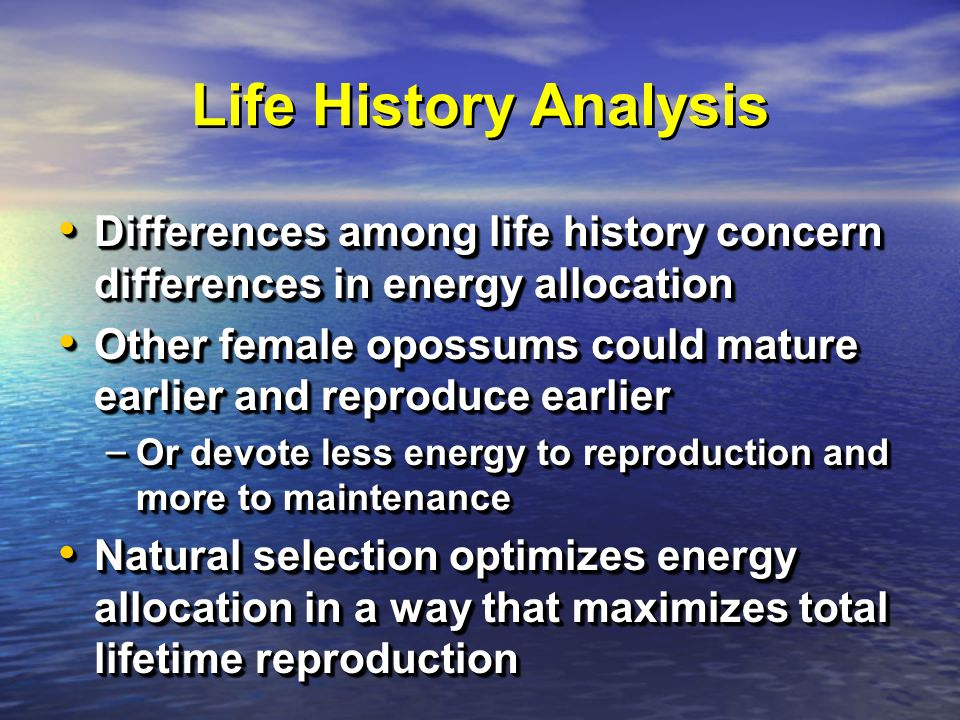 Life History Analysis Differences among life history concern differences in energy allocation Differences among life history concern differences in energy allocation Other female opossums could mature earlier and reproduce earlier Other female opossums could mature earlier and reproduce earlier – Or devote less energy to reproduction and more to maintenance Natural selection optimizes energy allocation in a way that maximizes total lifetime reproduction Natural selection optimizes energy allocation in a way that maximizes total lifetime reproduction Differences among life history concern differences in energy allocation Differences among life history concern differences in energy allocation Other female opossums could mature earlier and reproduce earlier Other female opossums could mature earlier and reproduce earlier – Or devote less energy to reproduction and more to maintenance Natural selection optimizes energy allocation in a way that maximizes total lifetime reproduction Natural selection optimizes energy allocation in a way that maximizes total lifetime reproduction