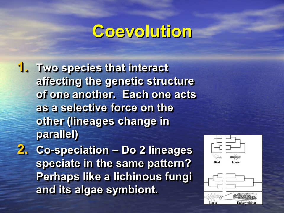 Coevolution 1. Two species that interact affecting the genetic structure of one another.