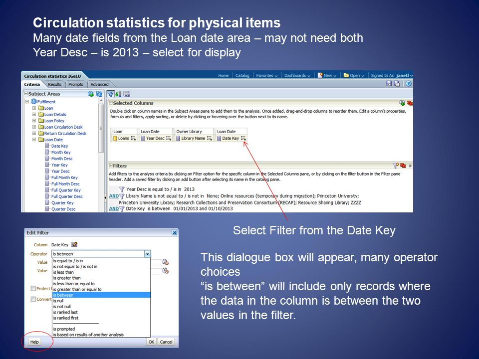 Circulation statistics for physical items Many date fields from the Loan date area – may not need both Year Desc – is 2013 – select for display Select