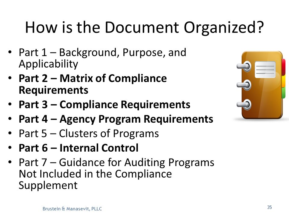 How is the Document Organized.
