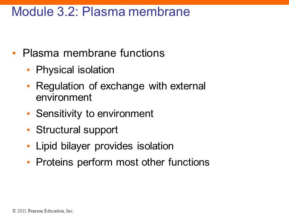 © 2011 Pearson Education, Inc. Module 3.2: Plasma membrane Plasma membrane functions Physical isolation Regulation of exchange with external environme