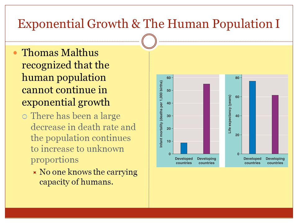 Exponential Growth & The Human Population I Thomas Malthus recognized that the human population cannot continue in exponential growth  There has been a large decrease in death rate and the population continues to increase to unknown proportions  No one knows the carrying capacity of humans.