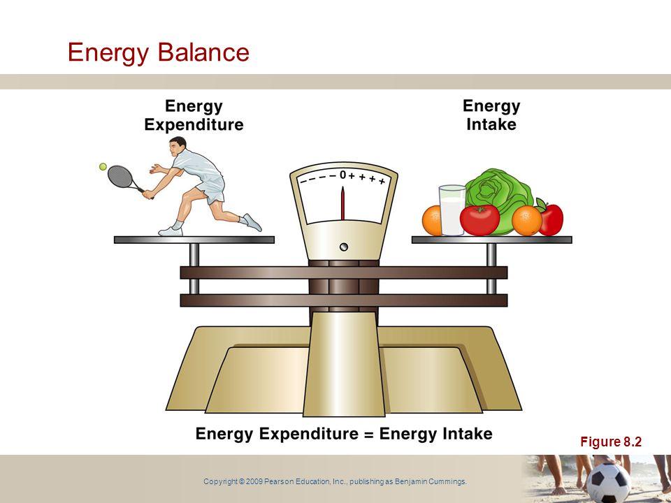 Copyright © 2009 Pearson Education, Inc., publishing as Benjamin Cummings. Energy Balance Figure 8.2