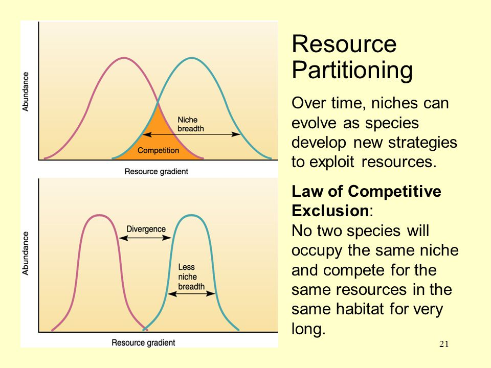 21 Resource Partitioning Over time, niches can evolve as species develop new strategies to exploit resources. Law of Competitive Exclusion: No two spe