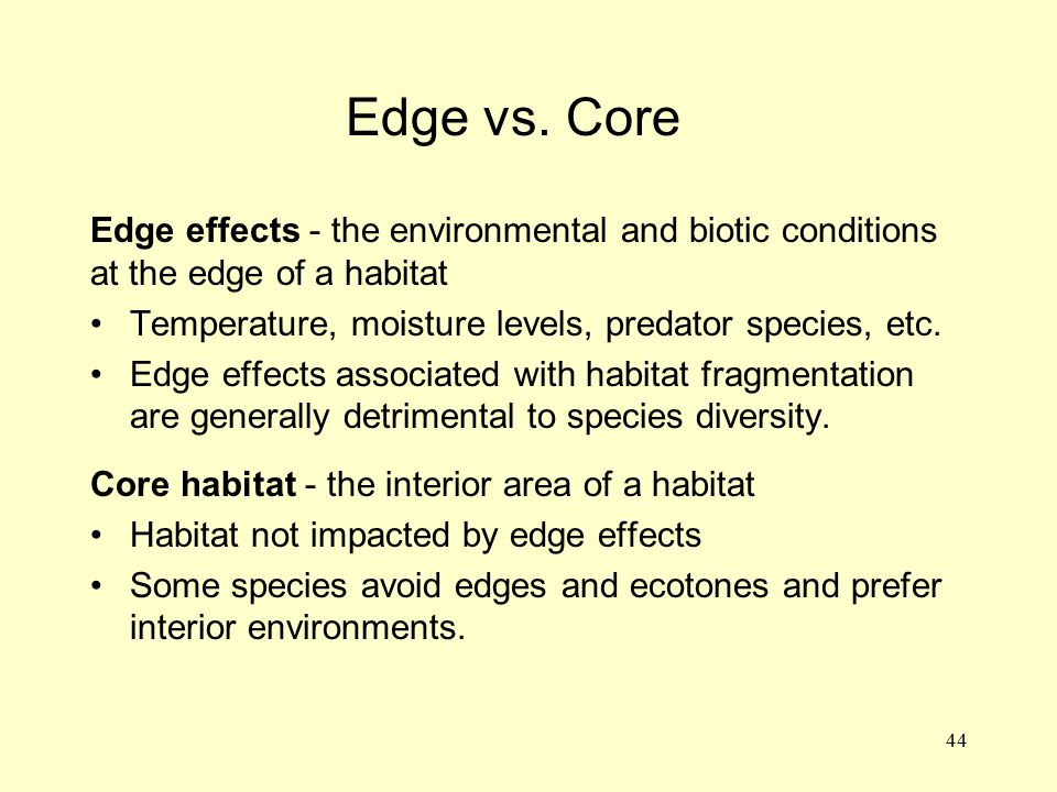 44 Edge effects - the environmental and biotic conditions at the edge of a habitat Temperature, moisture levels, predator species, etc. Edge effects a