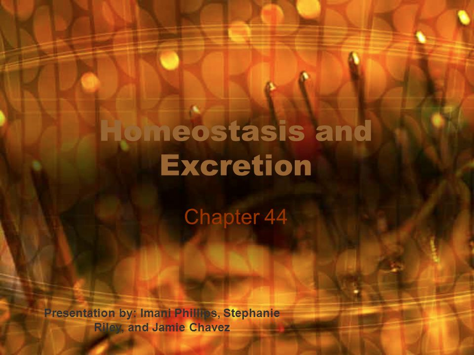 Homeostasis and Excretion Chapter 44 Presentation by: Imani Phillips, Stephanie Riley, and Jamie Chavez