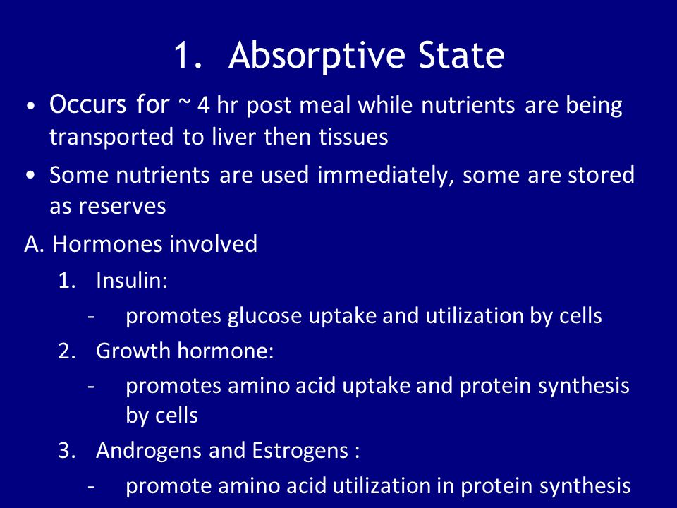 1. Absorptive State Occurs for ~ 4 hr post meal while nutrients are being transported to liver then tissues Some nutrients are used immediately, some