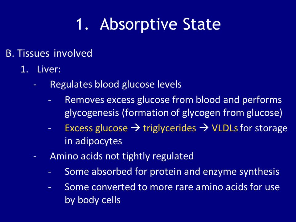 1. Absorptive State B. Tissues involved 1.Liver: -Regulates blood glucose levels -Removes excess glucose from blood and performs glycogenesis (formati