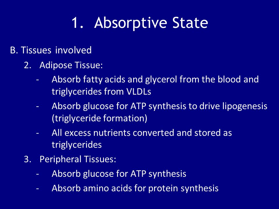 1. Absorptive State B. Tissues involved 2.Adipose Tissue: -Absorb fatty acids and glycerol from the blood and triglycerides from VLDLs -Absorb glucose