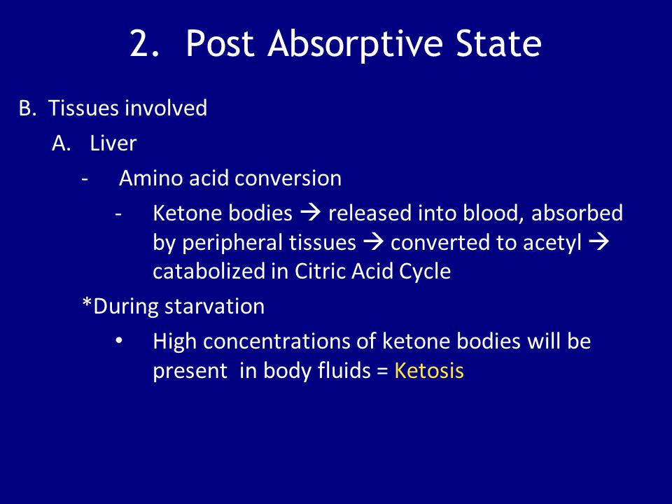 2. Post Absorptive State B. Tissues involved A.Liver -Amino acid conversion -Ketone bodies  released into blood, absorbed by peripheral tissues  con