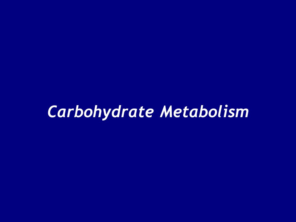 Carbohydrate Metabolism 2.