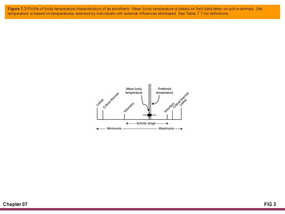 Chapter 07FIG 3 Figure 7.3 Profile of body temperature characteristics of an ectotherm. Mean body temperature is based on field data taken on active a