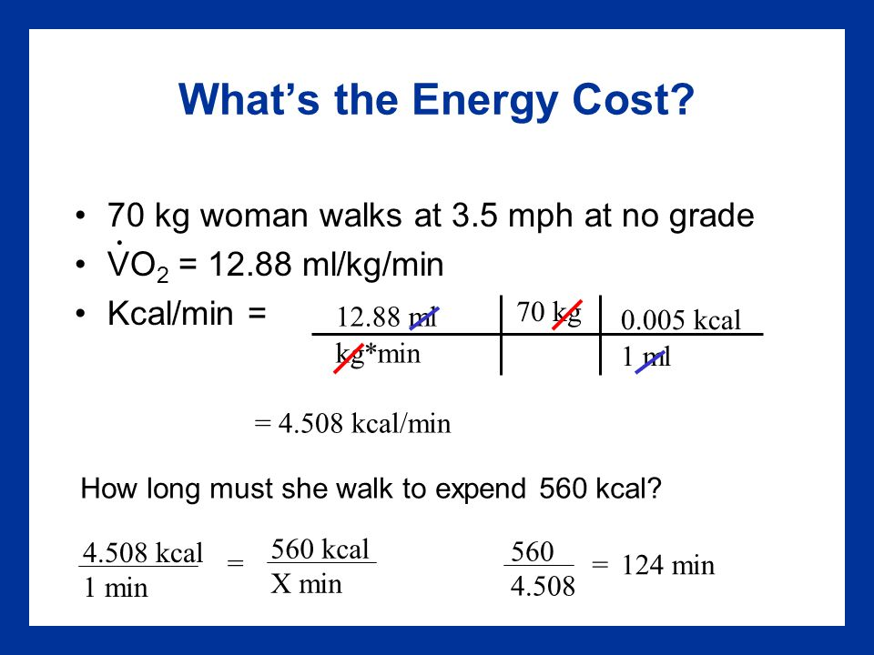 What's the Energy Cost.