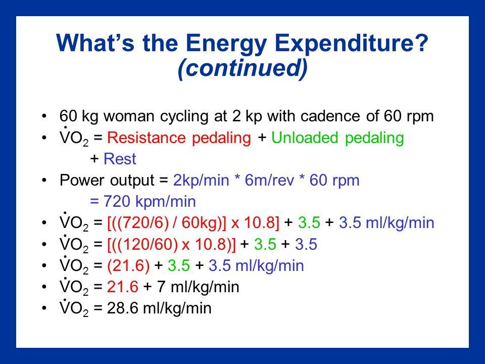 What's the Energy Expenditure.