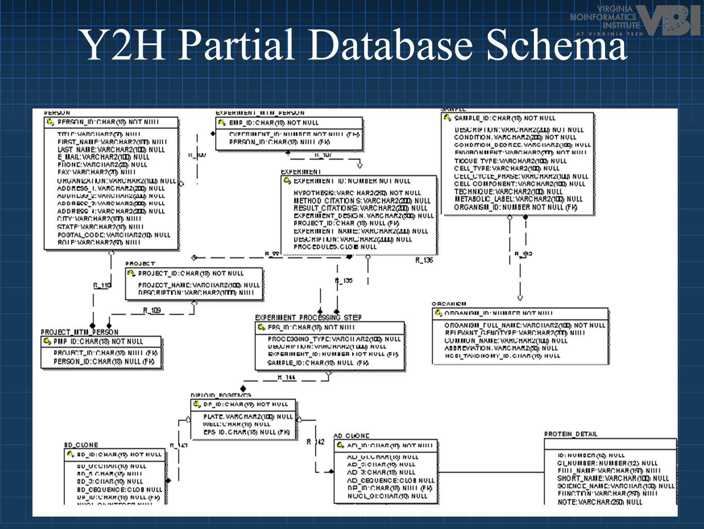 Y2H Partial Database Schema