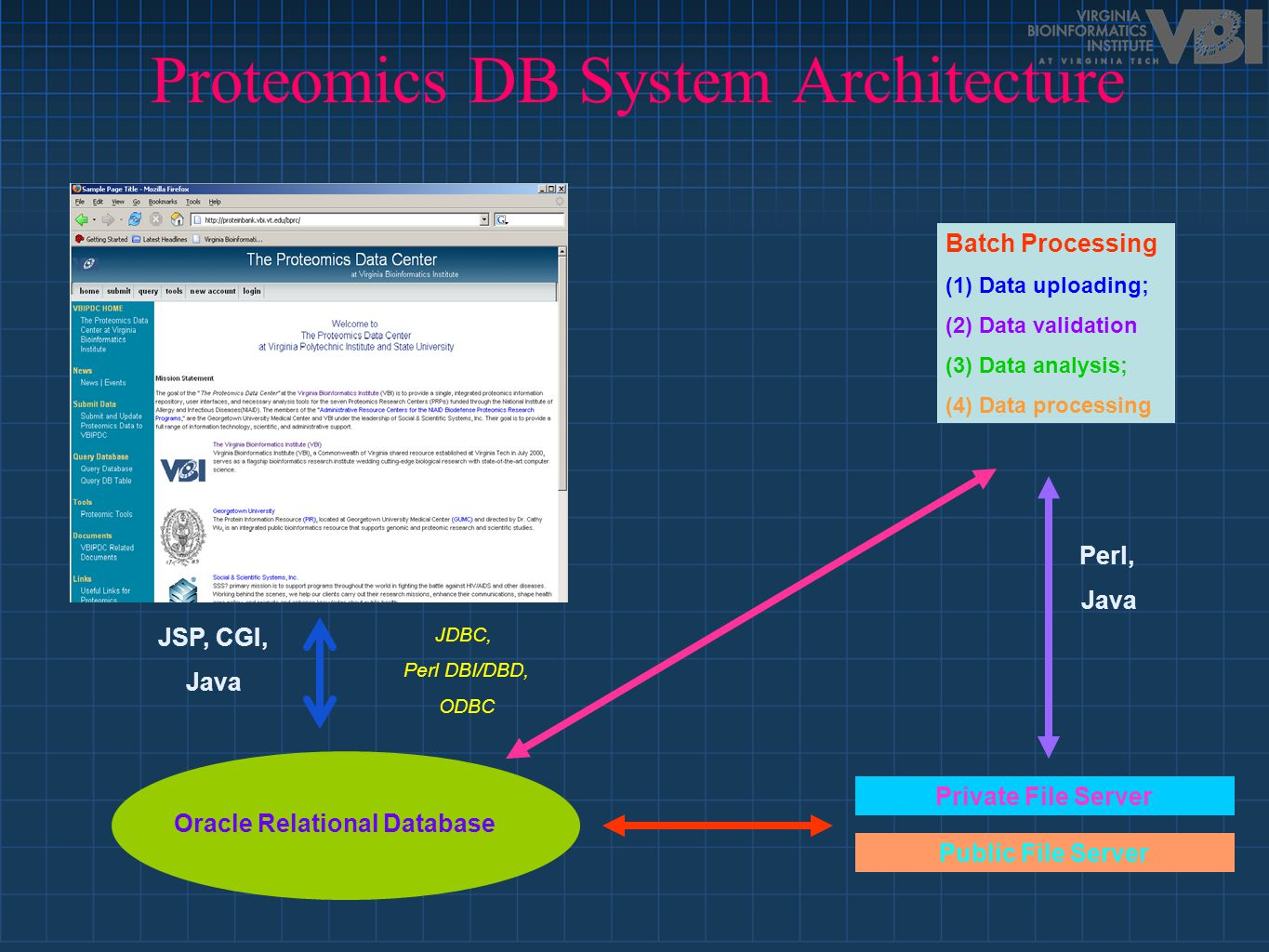 Proteomics DB System Architecture Public File Server Private File Server Oracle Relational Database JDBC, Perl DBI/DBD, ODBC Batch Processing (1) Data