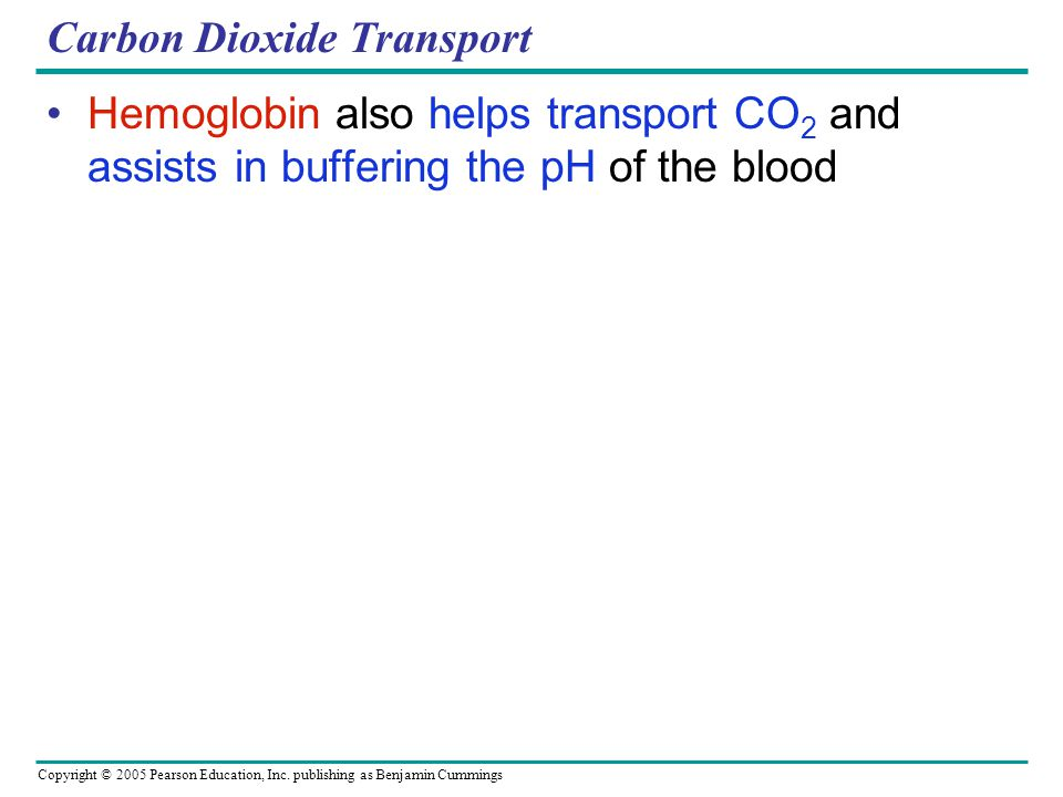Copyright © 2005 Pearson Education, Inc. publishing as Benjamin Cummings Carbon Dioxide Transport Hemoglobin also helps transport CO 2 and assists in